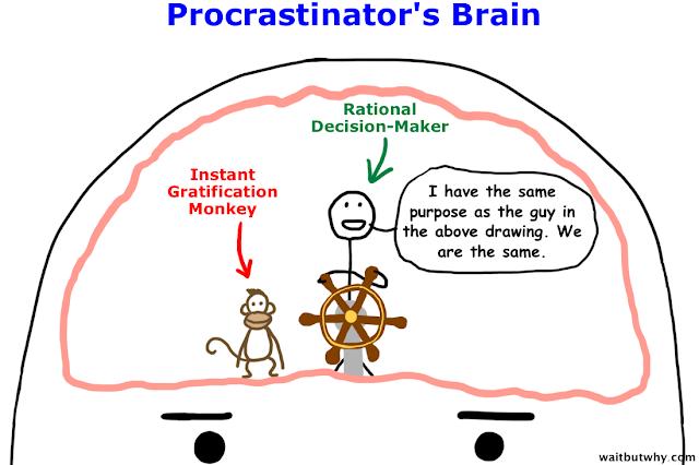 wait but why instant gratification monkey